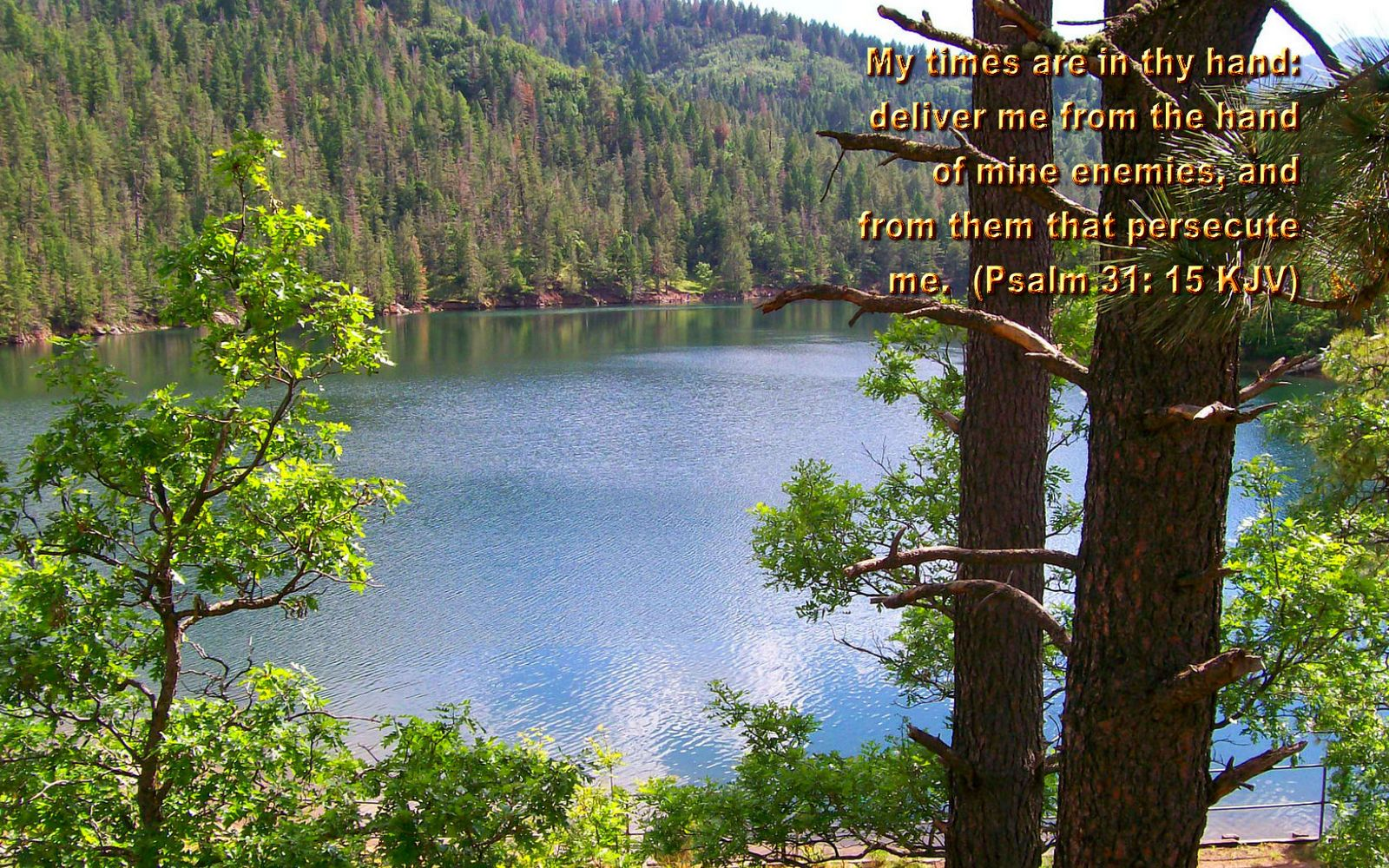free bible quotes pictures nature backgrounds free christian