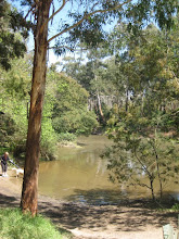 Yarra River - Warrandyte
