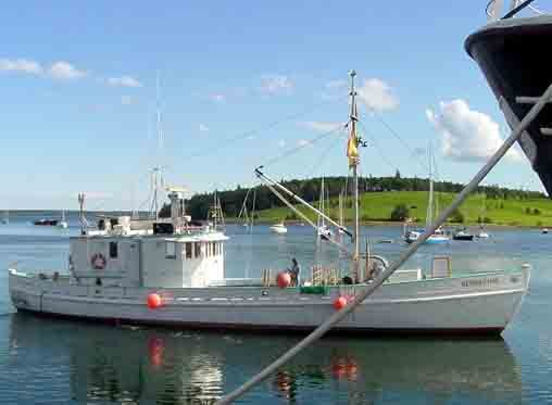 Bay of Fundy Blog: Fundy sardine boat plans promo trip