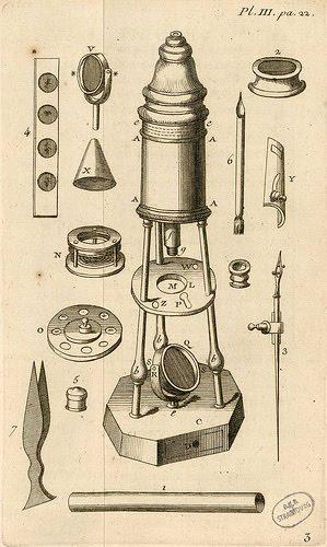 ciencia