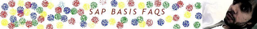 SAP Basis FAQs