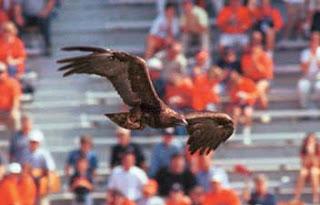 Auburn- War Eagle.