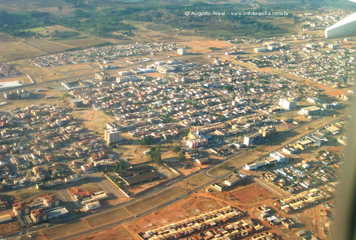 Samambaia - Nasceu Samambaia