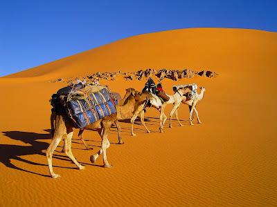Libye - Erg de Takiumet