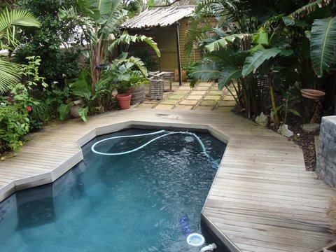 Eco Pool Design From Chlorine Pool To Eco Pool South Africa
