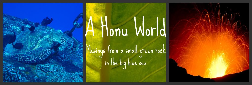 A Honu World: Musings from a Small Green Rock in the Big Blue Sea by Rand Blimes