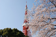 久しぶりの東京タワー。 新東京タワー(スカイツリー)ができても、 (dsc )