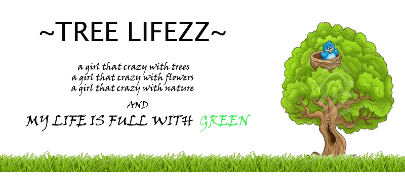 ~TREE LIFEZZ...