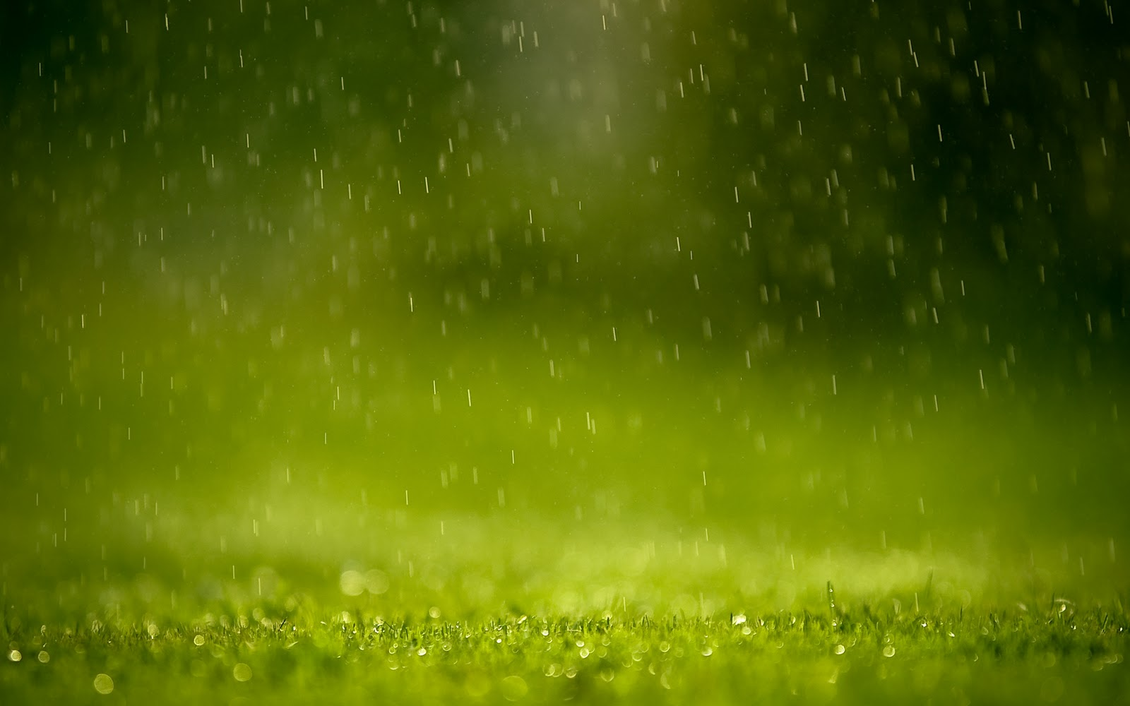 Wallpapers Box: Raindrops On Window HD Wallpapers
