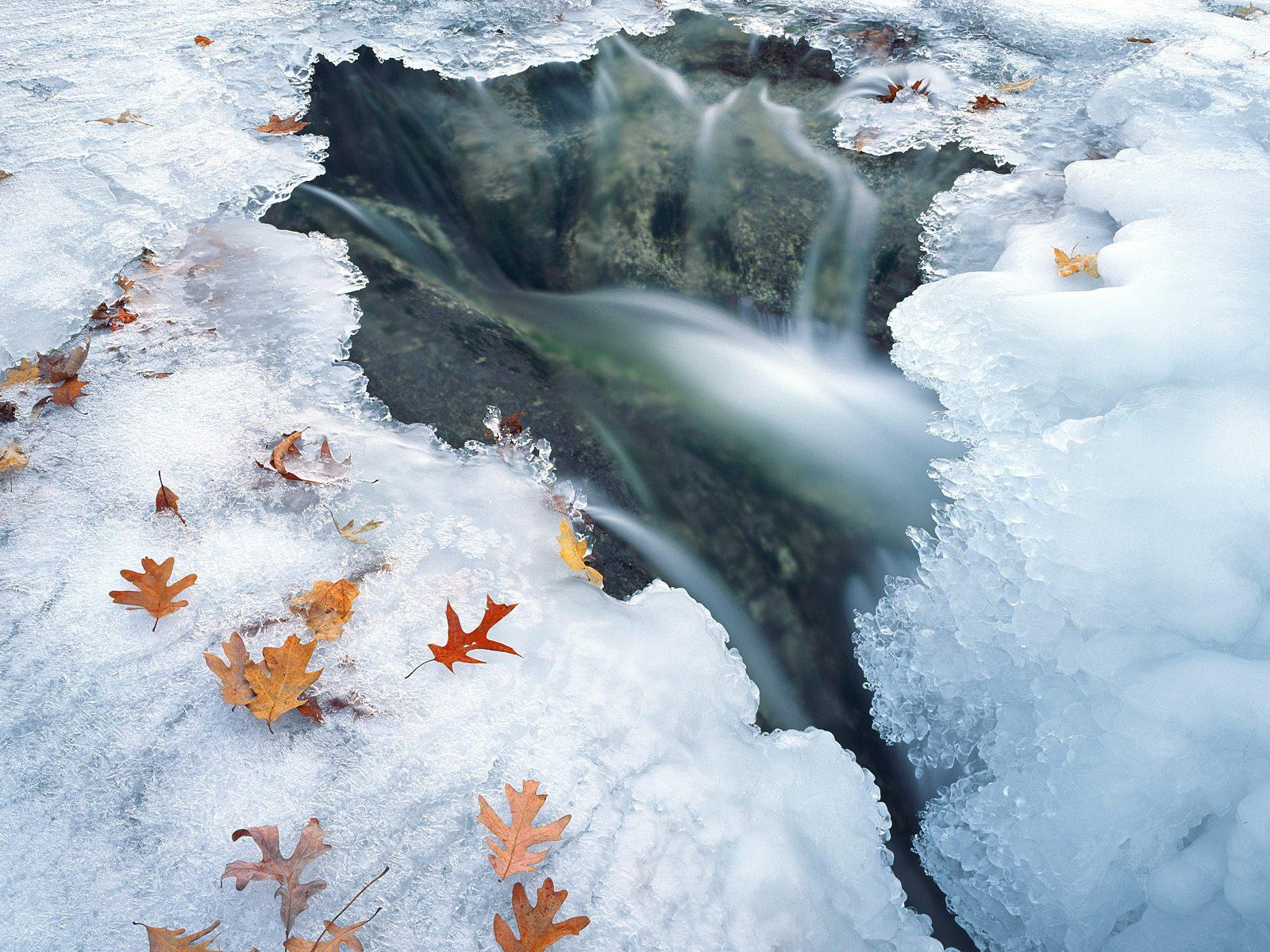 http://4.bp.blogspot.com/_2UbsSBz9ckE/SvI4SWcqYlI/AAAAAAAAAVE/TcvStGwe02Y/s1600/winter+high+definition+wallpapers+1.jpg