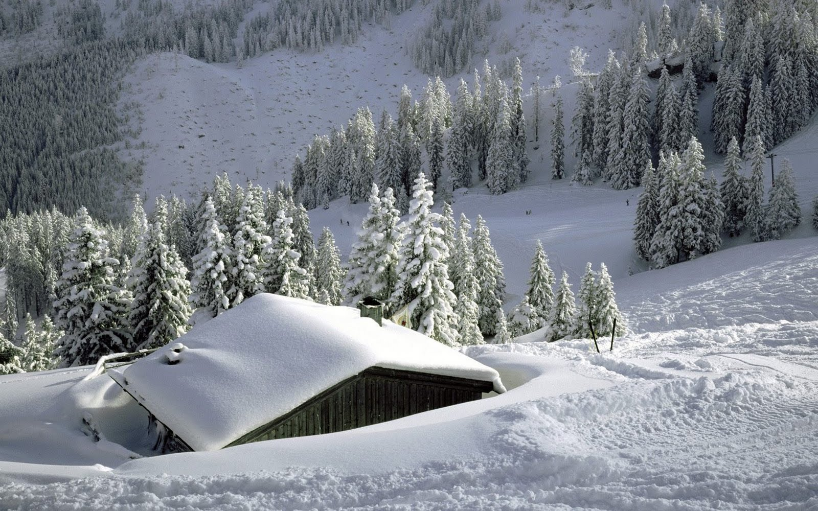 http://4.bp.blogspot.com/_2UbsSBz9ckE/SxrqmyjA5XI/AAAAAAAAAfE/XAgFXkfxEZA/s1600/Mountains_snow_winter_hd_wallpaper.jpg
