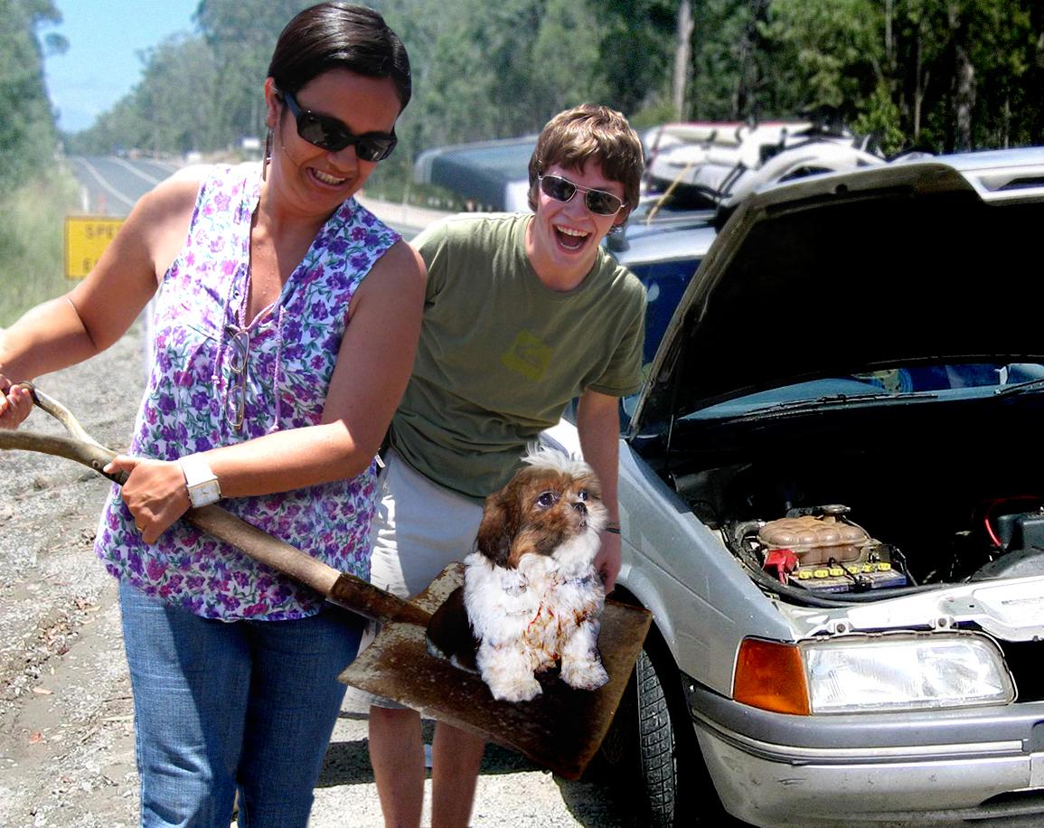Family Finds Dog Inside Car Engine