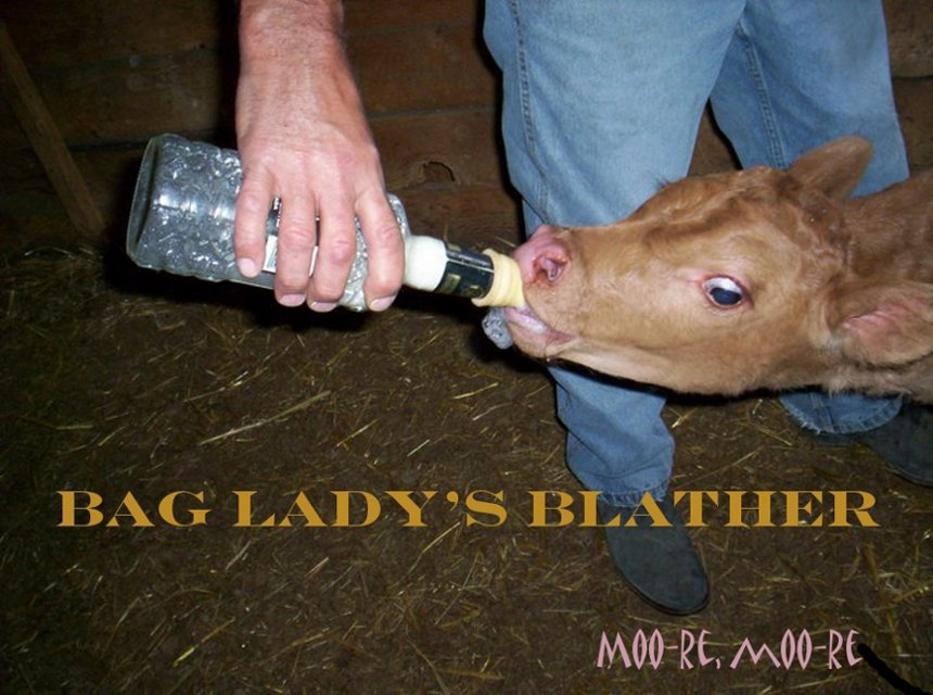 Bag Lady's Blather