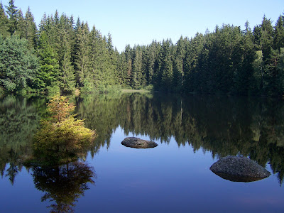 Großer Teich 100_0033