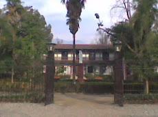 """"""" Sede de la U. Andrés Bello, donde el profesor Cristián fue a al Congreso de Evaluación.-"""