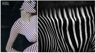 accostamenti infiniti, zebra, nudity, stripes