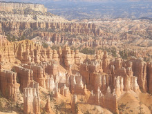 A view over the Bryce Canyon, USA.