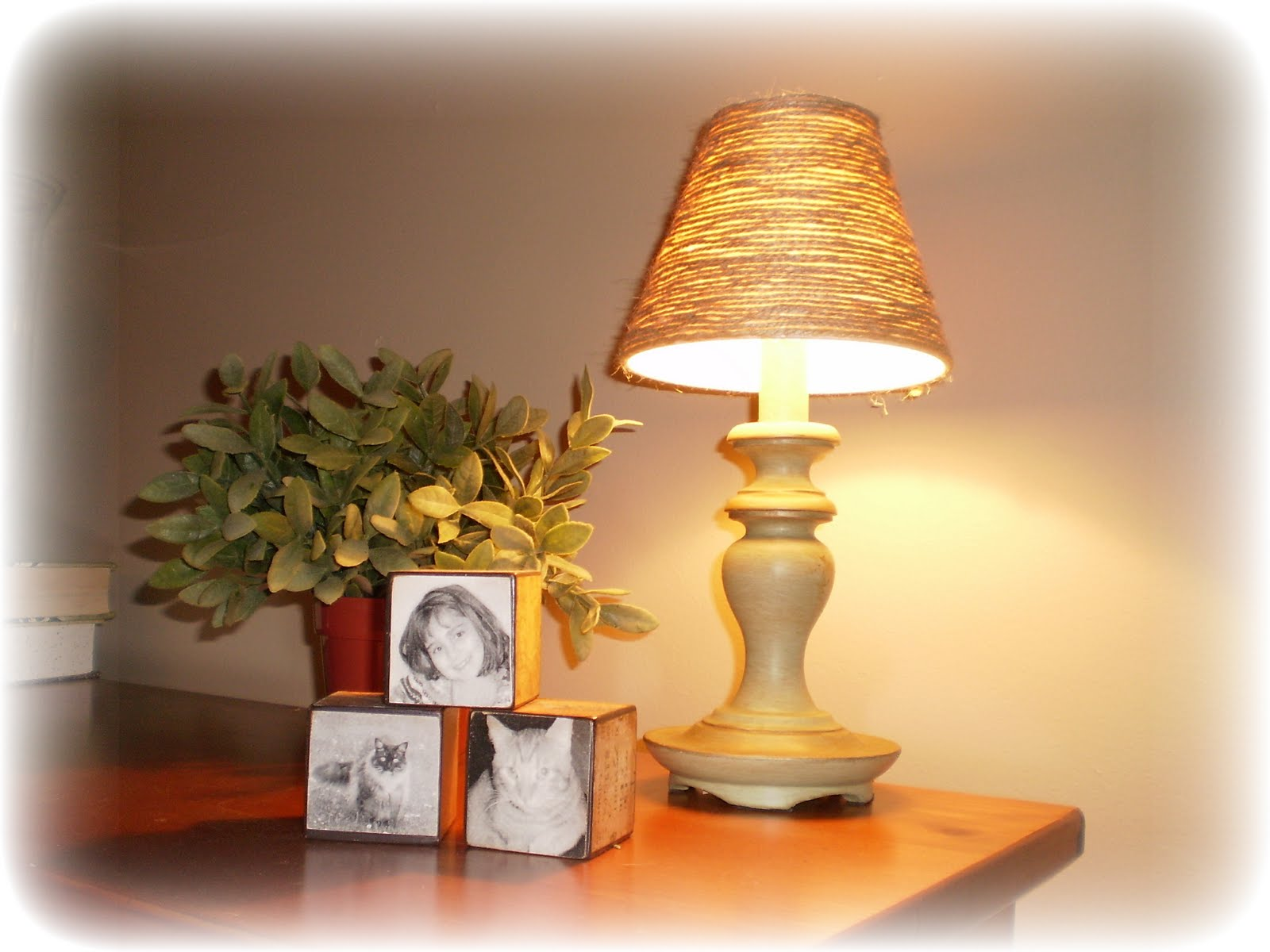 Where beauty meets function no function friday lamp for Redo lamp shades