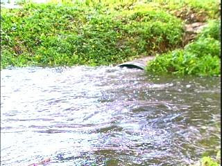 Hank was swept down this drainage pipe. PHOTO CREDIT: WTVT-13