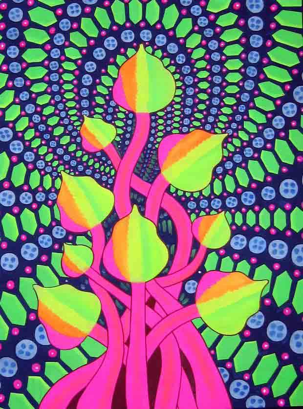 Les eucaryotes et autres mycètes du hippie Psychedelic+Mushrooms