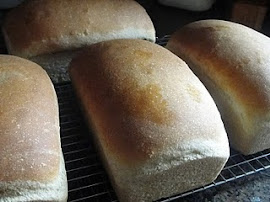 Old Fashioned Whole Wheat Bread