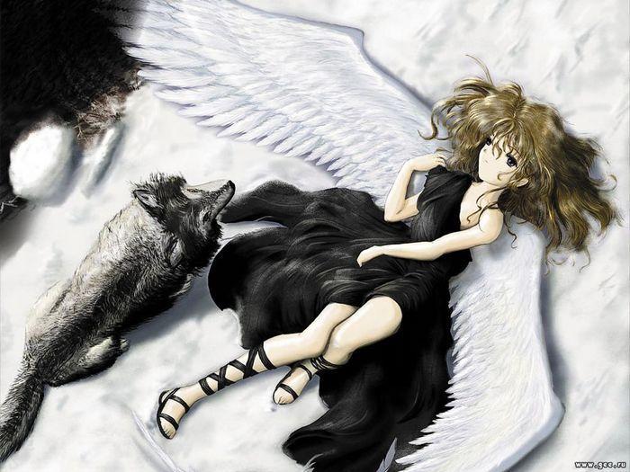 anime wolves. anime wolves.