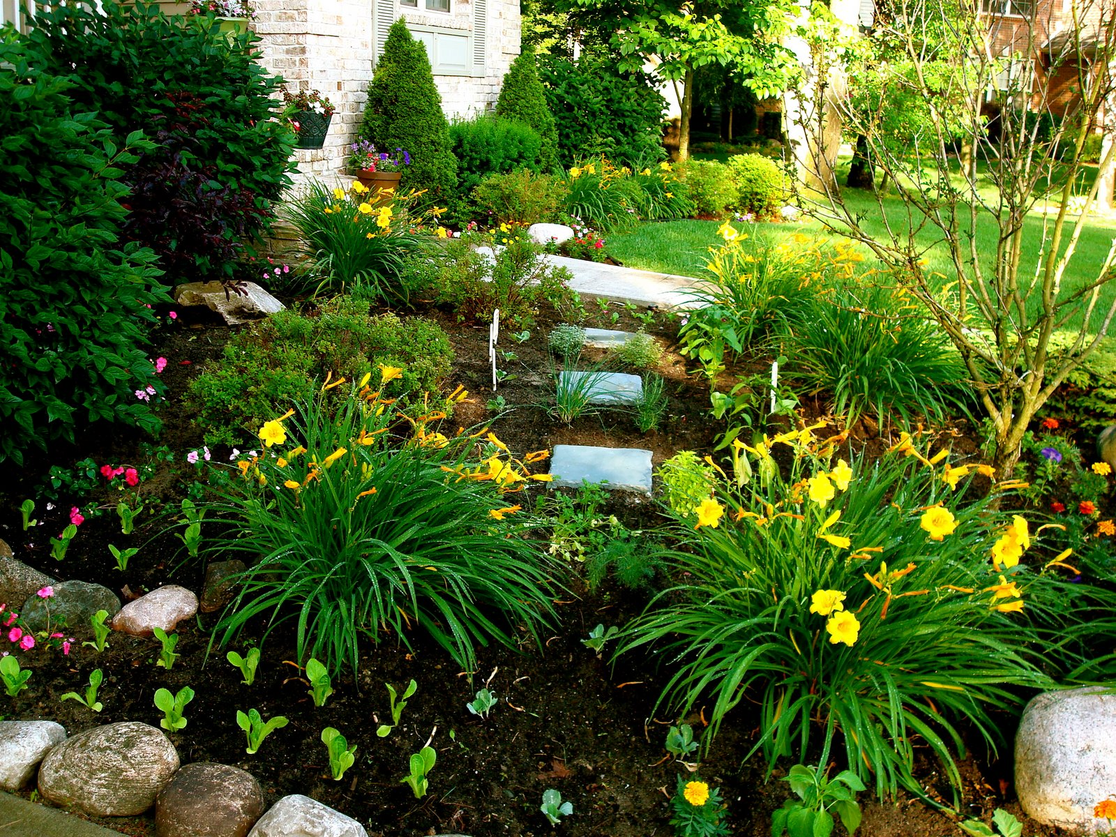 Daddydan360 cool new concepts for gardening - Flowers for the front yard ...