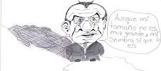¿Qué es y para qué sirve la reforma política de Calderón?