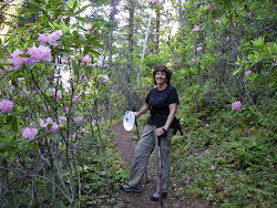 Hiking in the Rhodies