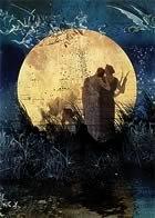 El amor cubierto de Noche