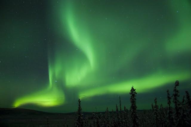http://4.bp.blogspot.com/_2e9y75mHoZ0/R1DSsf9oGGI/AAAAAAAAADs/S8Xub7dWeEM/s1600-R/aurora%2Bwith%2Btrees.jpg