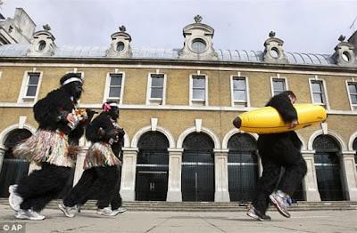 The Gorilla Run In London Seen On www.coolpicturegallery.net