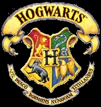 Hogwarts the wizard school - Harry Potter 7