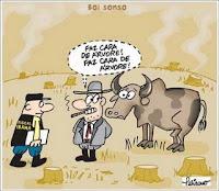 Pecuária brasileira: 'Patada' Ecológica