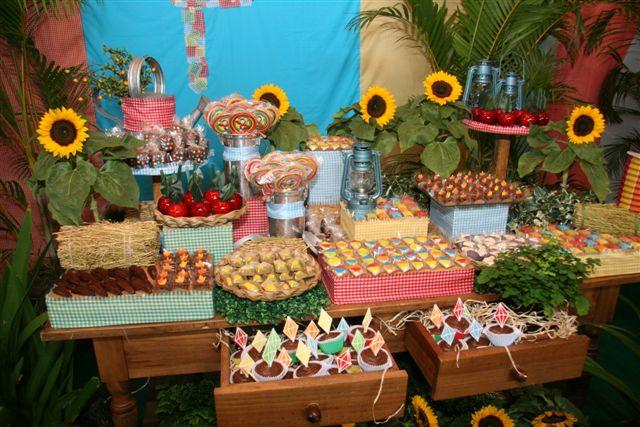 HAPPY FEST Junho 2010 # Decoração Tnt Festa Junina
