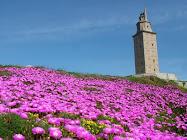 Vivo en A Coruña