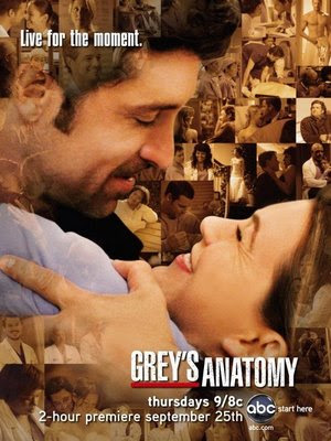 Anatomia de Grey 5ª Temporada Episódio 19 legendado