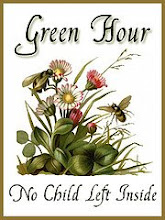 The Green Hour Challenge