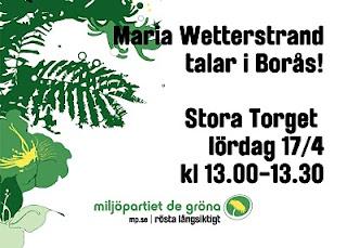 Språkröret Maria Wetterstrand till Borås