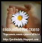 SELINHO DOS(AS) AMIGOS(AS)