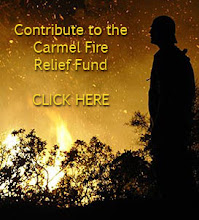 Please Help The Victims Of The Carmel Fire