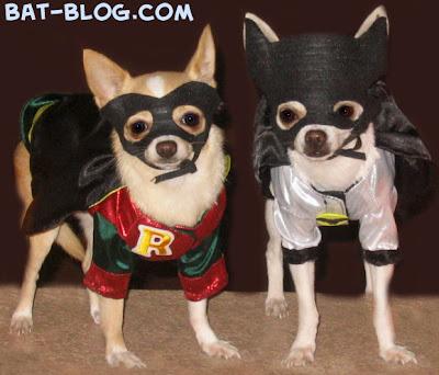 A regular reader of the BAT,BLOG sent us this wonderful Batman  Robin photo  its very funny! She wrote \u0026quot;Hey Bat,Blog, I love your website  visit almost