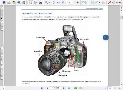Fragmento de página del PDF