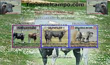 TORO EN EL CAMPO