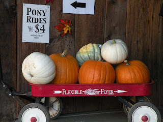 Wagon loaded with multi-colored pumpkins