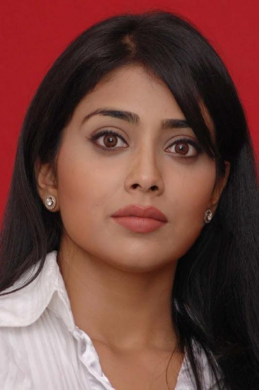 Shreya Saran Pressmeet Stills sexy stills