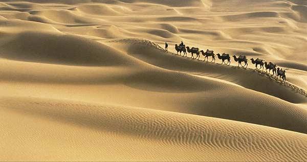 """""""Las dunas cambian con el viento, pero el desierto sigue siendo el mismo.""""   P.Coelho"""