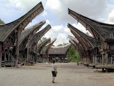 ancient Toraja beauty
