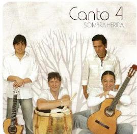 Sombra Herida 2007