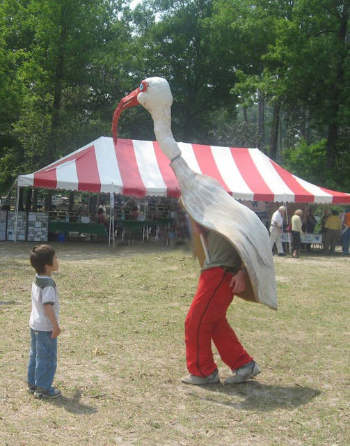 Ibis and Boy at the Wakulla Springs Wildlife Festival